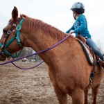 auberry-horseback-riding-lessons-4408